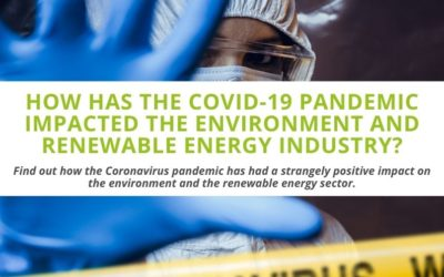 How has the COVID-19 Pandemic Impacted the Environment and Renewable Energy Industry?